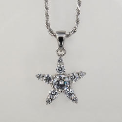 Sterling Silver Cubic Zirconia Star Pendant with Chain